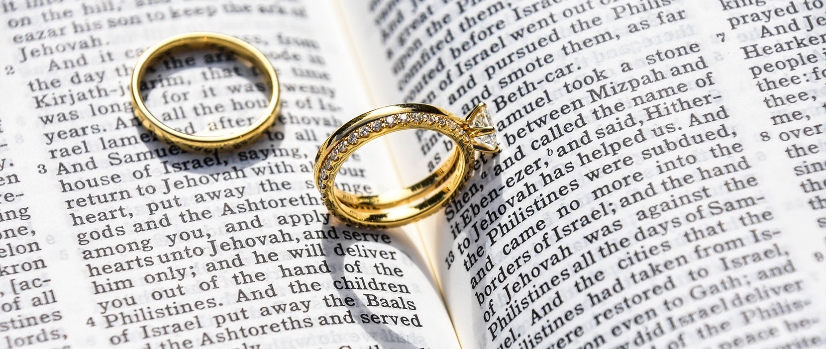 Main image for Gospel Preaching Marriage