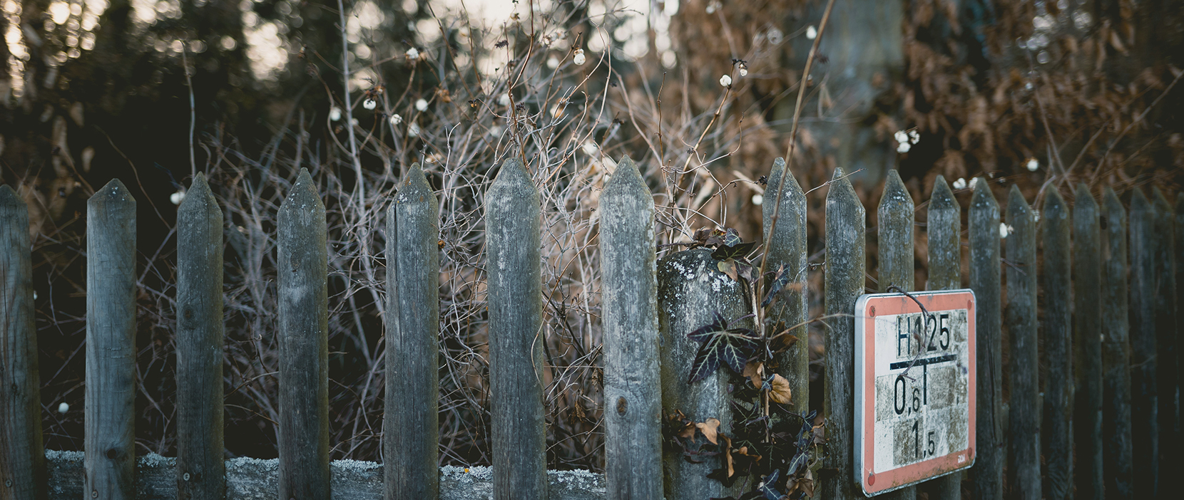 Featured Image for Let The Fences Fall