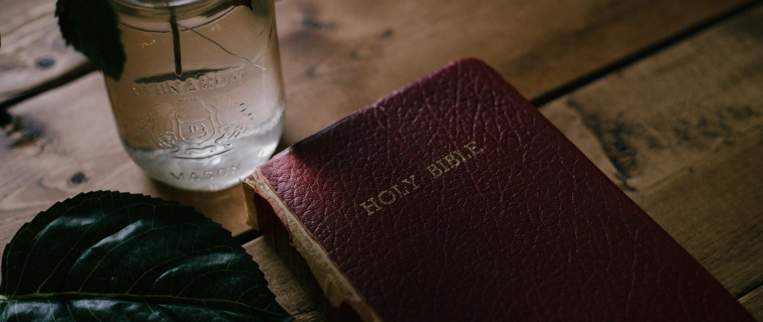 Main image for Scripture Is True