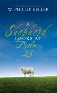 shepherd-looks-at-psalm-23