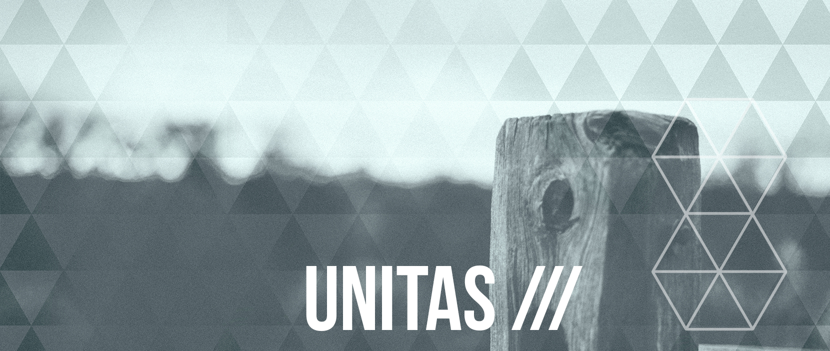 Main image for Unity.
